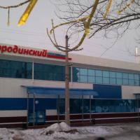 Kamyshin_Borodinskyi